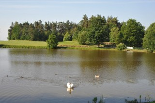 Golf Resort Franzensbad-Taich Loch Nr.10